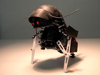 swashbot.JPG