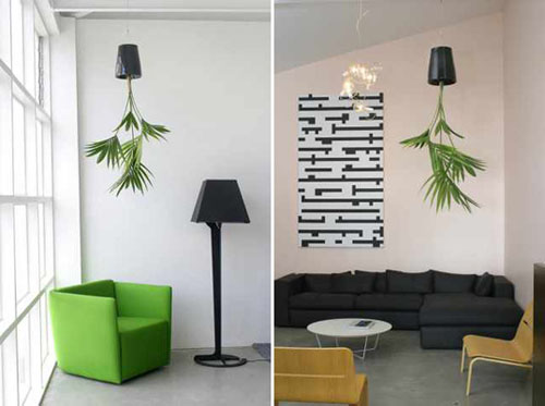 Living-room-interior-design-with-interesting-ceilings-from-green-plants-in-pots