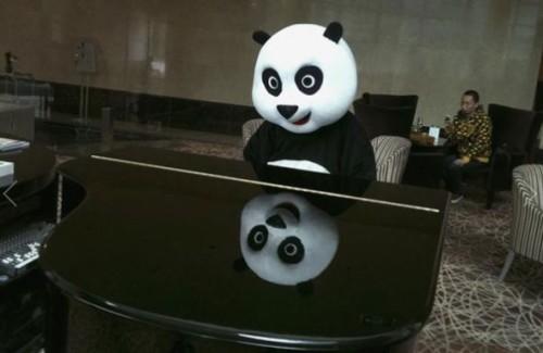 panda-hotel3