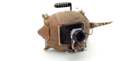 Road Kill Stylee: Cameras Made Out of Turtle and Armadillo Byproducts