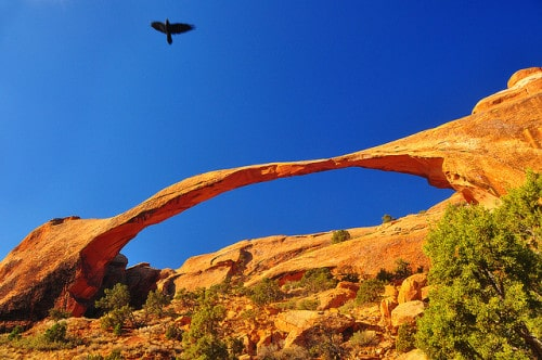 Arches National Park by Bill Gracey