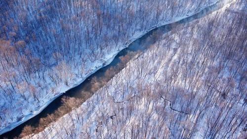Cameron Davidson Creek