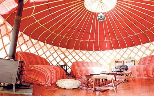 Camping Lounge