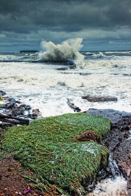 Hurricane Irene Milford Ct