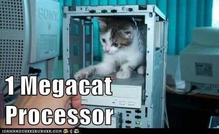 Megacat Processor