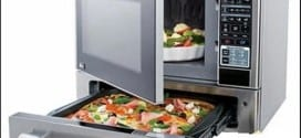 The Microwave And Pizza Oven Combination