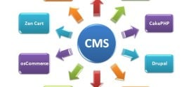 Five Key Points to Consider When Selecting a Content Management System