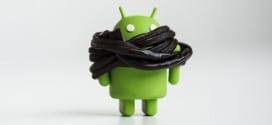 Android L: Will The Next Android Update Be Named 'Licorice'?