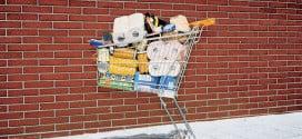 Trend In Online Bagging