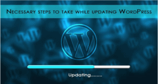 Steps to take while updating wordpress