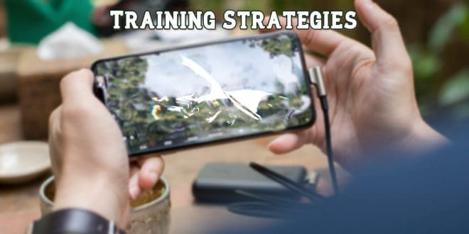 OSRS Mobile Training Strategies