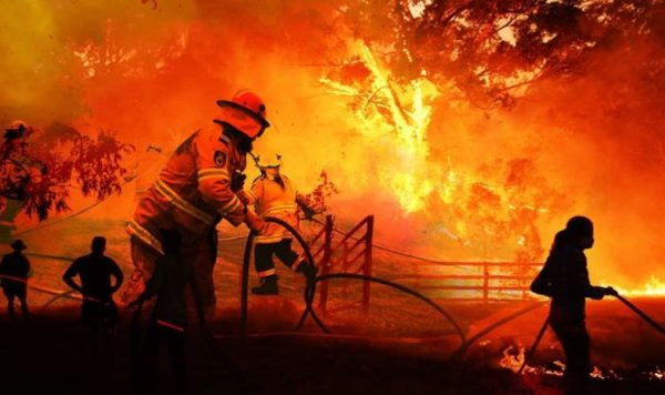 What Caused Australia Bushfires