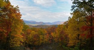 Pick A Vacation In Nature! – Top 6 Gatlinburg Must-Visits For All Nature-Lovers