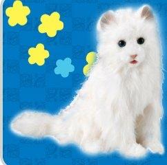 segatoys_dreamcat_1.jpg